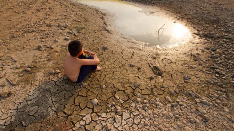Ecoansiedad: qué es y cómo enfrentar la angustia por el cambio climático