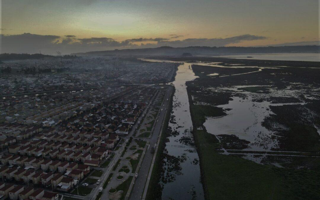 Todo se hizo mal en el Rocuant-Andalién:  Mil hectáreas de humedal depredadas por inmobiliarias